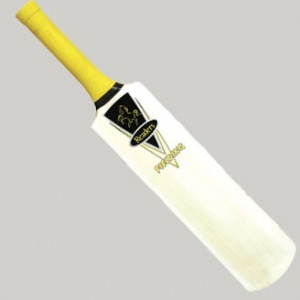 Fielding Practice Cricket Bat