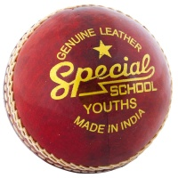 Readers Leather Practice Cricket Ball
