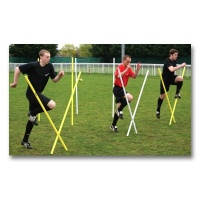 Diamond Pro Agility Poles (Single)